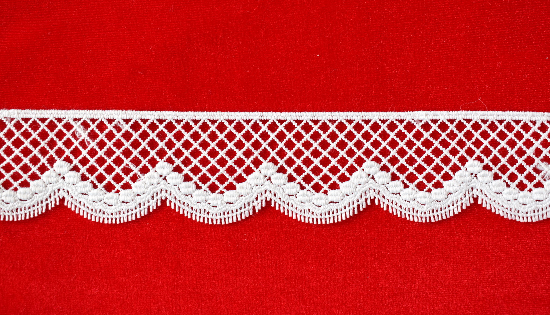 Lace: Not embroidered «51668-4»