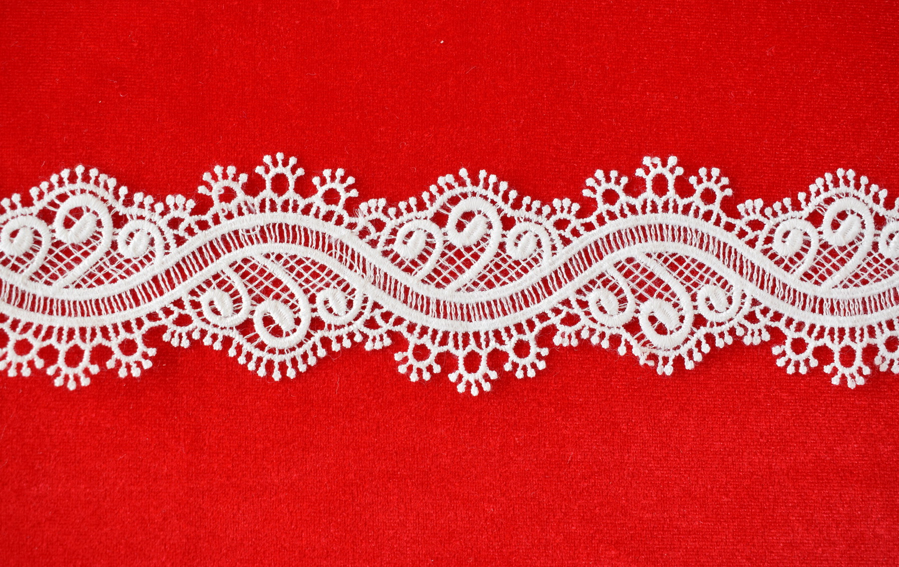 Lace: Not embroidered «67716-4»